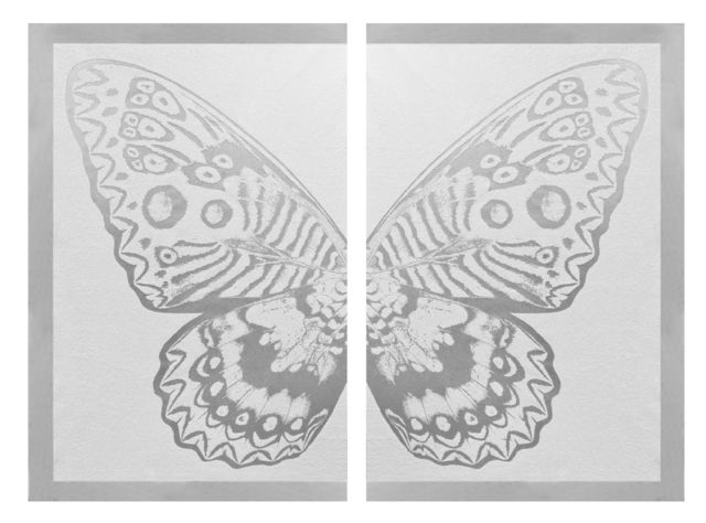 , 'Hybrid Silver Butterfly on White ,' 2016, Taglialatella Galleries