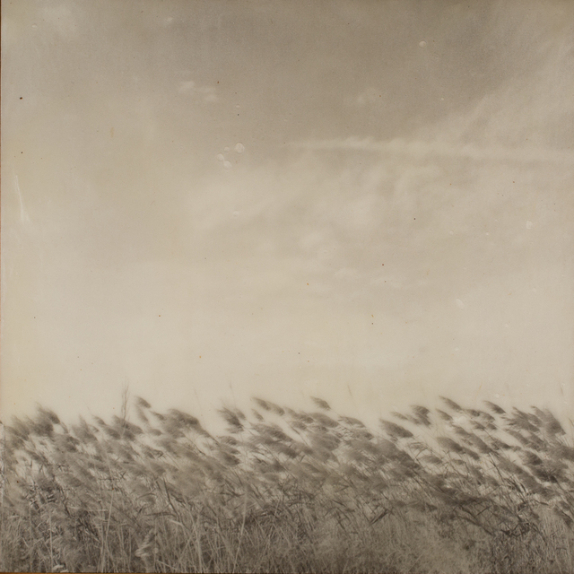, ' Ohio, Wheat Field, 100 Memories,' 2015, G. Gibson Gallery