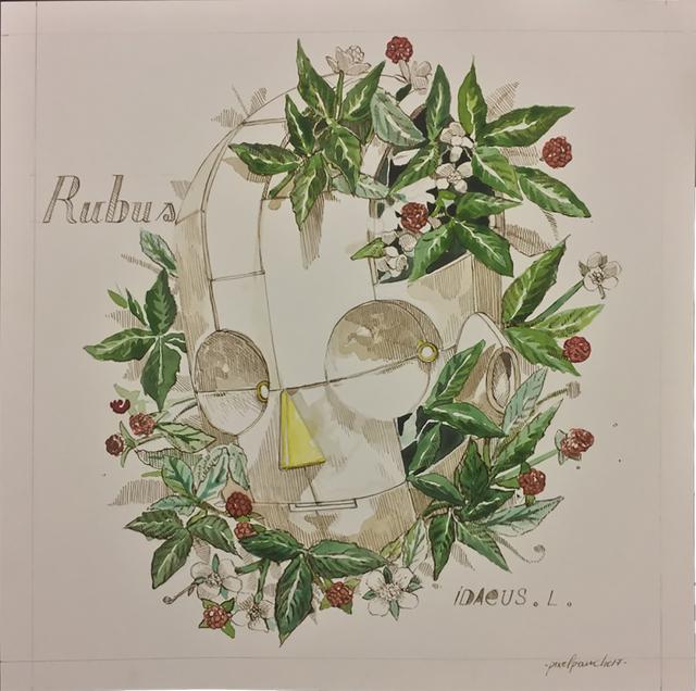 , 'Rubus ,' 2018, Treason Gallery