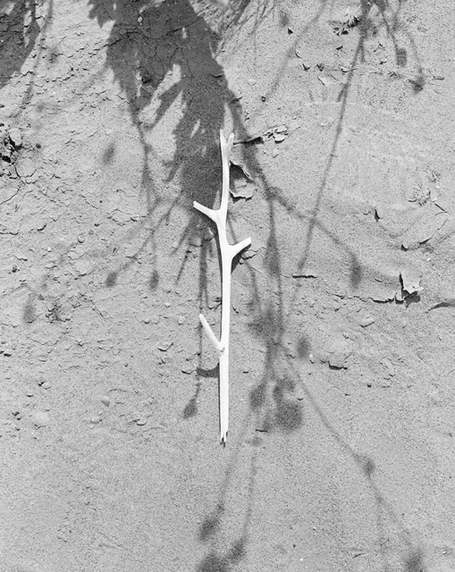 , 'Stick,' 2014, Gallery Luisotti