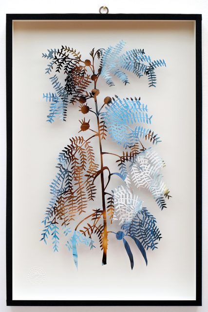 , 'You Can Learn a Lot of Things From the Flowers - Plant CXXIX - Mimosa - Lui - Maysa,' 2014, Less is More Projects