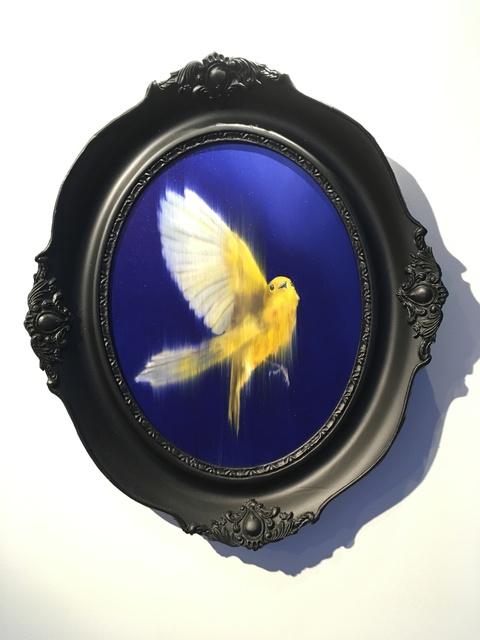 Axel Rios, 'Canary, Fuga', 2018, Isabel Croxatto Galería