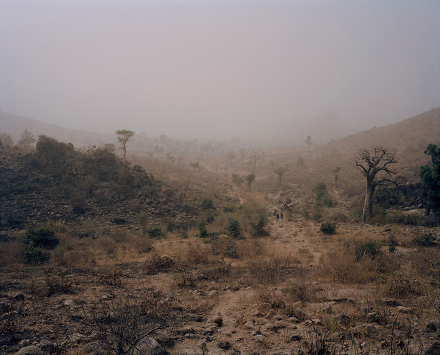 ", '""Northern Valley"", Cameroon,' 2012, Podbielski"