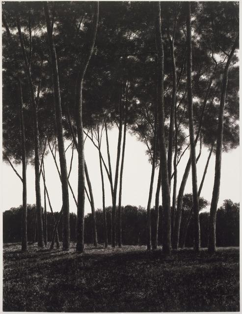, 'Bower,' 2003, DANESE/COREY