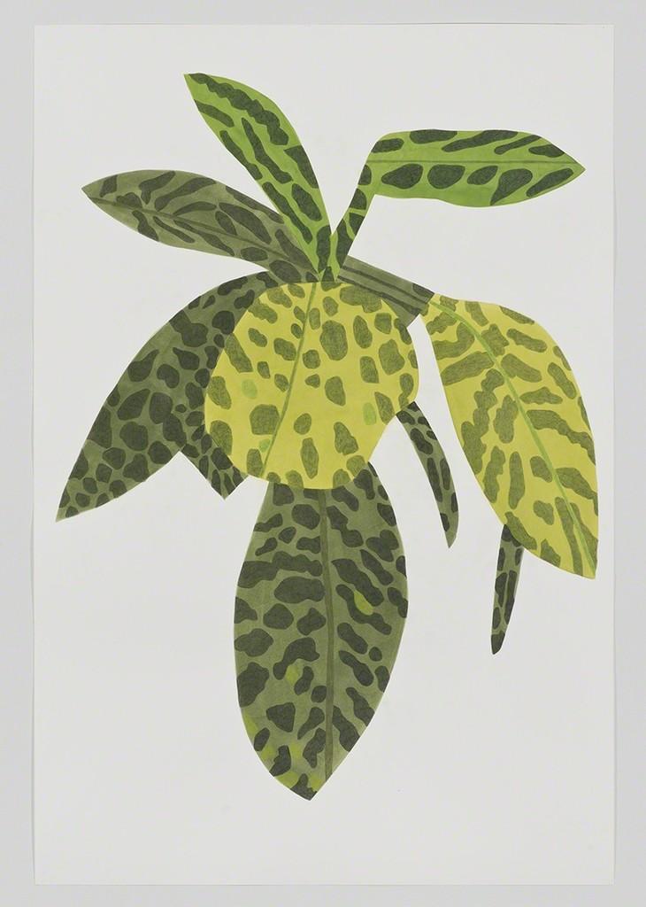 Jonas Wood, 'Green Plant Clipping,' 2014, David Kordansky Gallery
