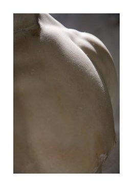 , 'Pecho (Serie Dependencia Mutua no.10),' 2010, Carroll / Fletcher