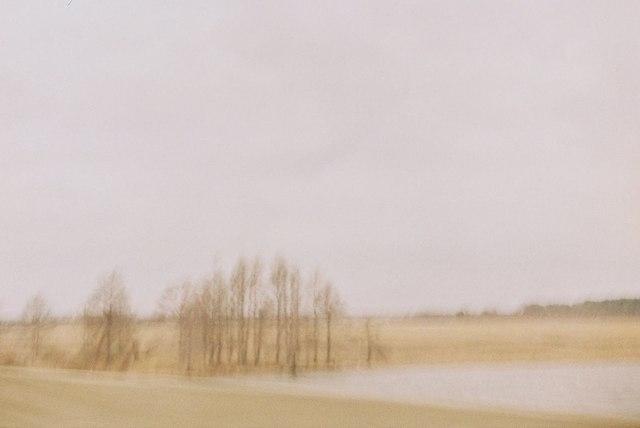 , 'Untitled (Alabama Landscape),' 2011, Cob