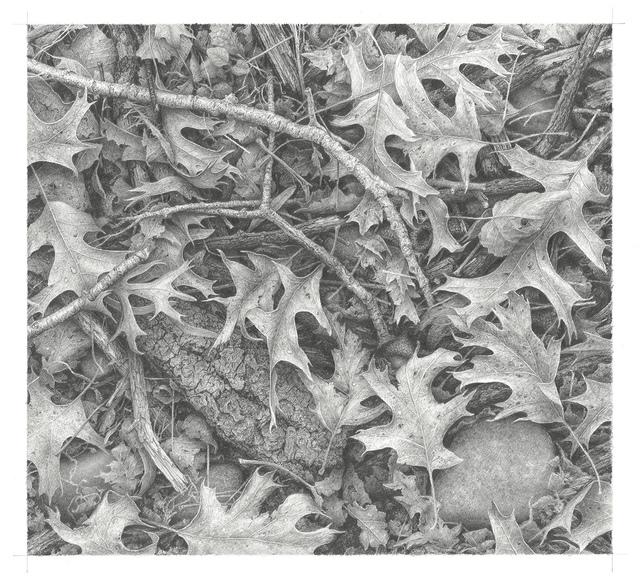 , 'Ground Cover,' 2018, M.A. Doran Gallery