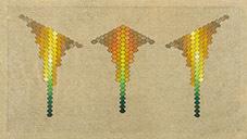 , 'La descomposición de la piña, (ensaño #2),' 2016, Espacio El Dorado