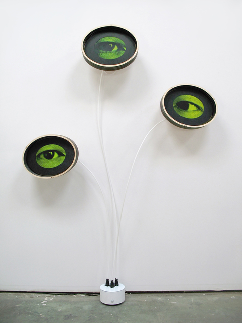, 'Eyeris VIII,' 2016, Carl Solway Gallery