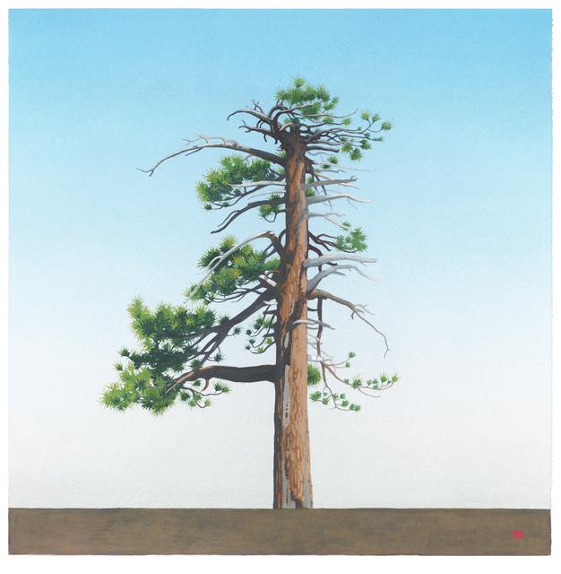 , 'Waterman Tree [N34*20.193+W117*56.124],' 2014, LAUNCH LA