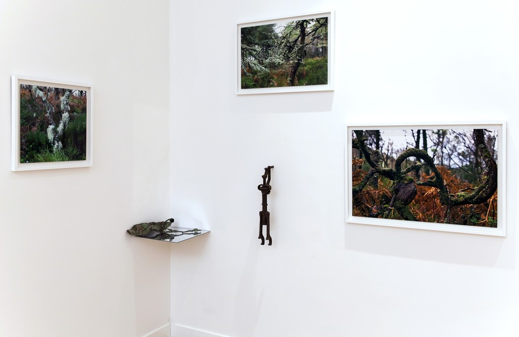 "Installation view: Elaine Byrne, ""La Diritta Via"""