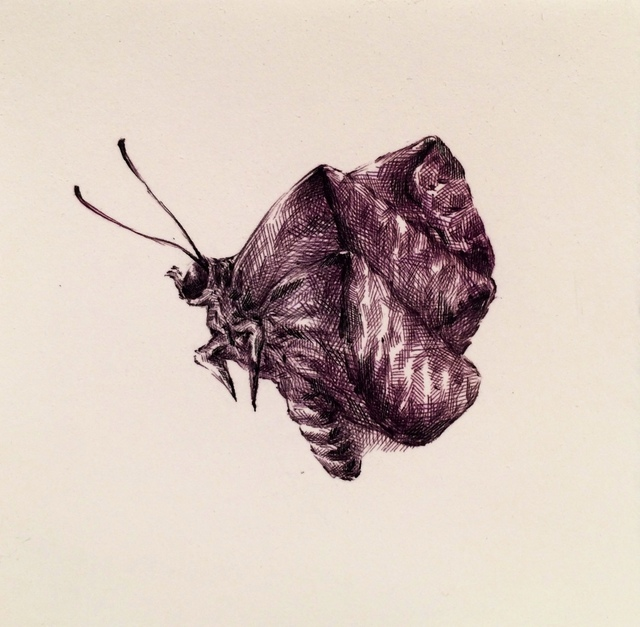 , 'Insects #3,' 2014, Gallery NAGA