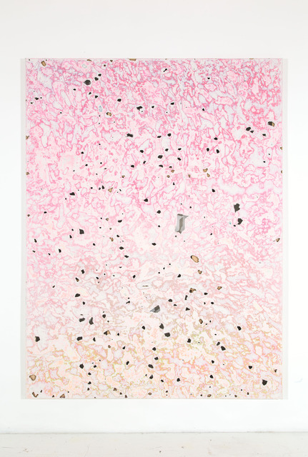 , 'deredemifloreulpi,' 2009-2014, Nina Johnson