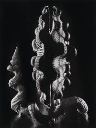 Pecten Nodosis and Vermicularia Spirata