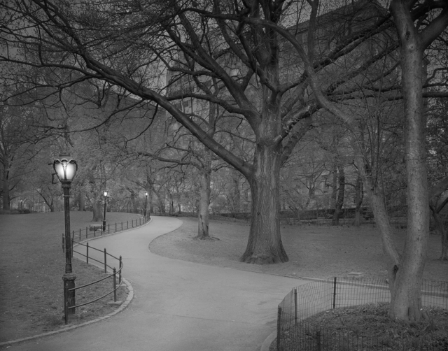 , 'East Side Exit - Deep In A Dream - Central Park,' 2009, Holden Luntz Gallery