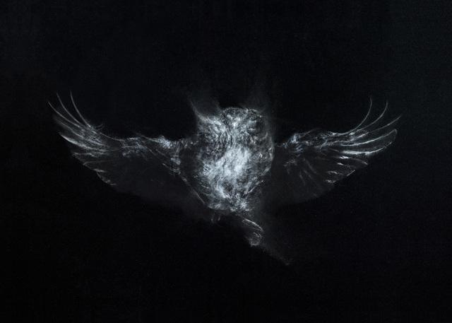 , 'Owl 2,' 2017, La Patinoire Royale / Galerie Valerie Bach