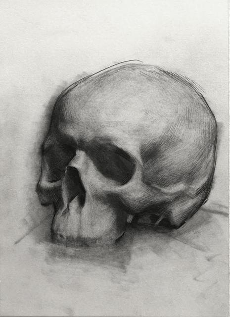 Evan Kitson, 'Skull Study', 2018, IX Gallery