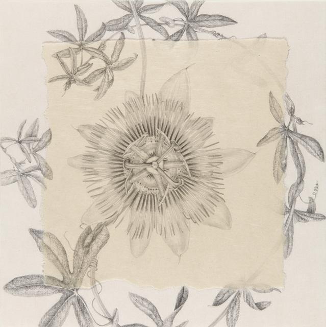 , 'Pasiflora I,' 2014, Lucia Mendoza