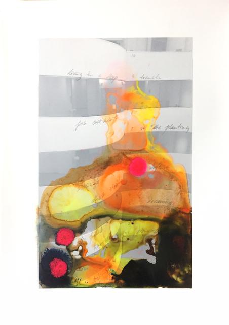 , 'Looking into the void ,' 2017, Alberta Pane