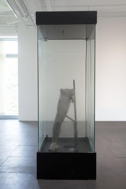 Richard Streitmatter-Tran, 'Vital Matter', 2017, de Sarthe Gallery