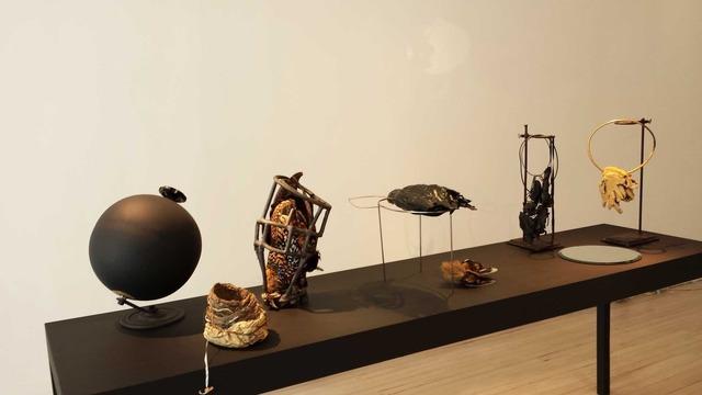 , 'Strange Birds,' 2013, Ornamentum