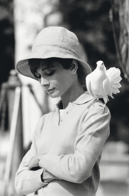 , 'Hepburn With Dove,' 1966, Hilton Asmus