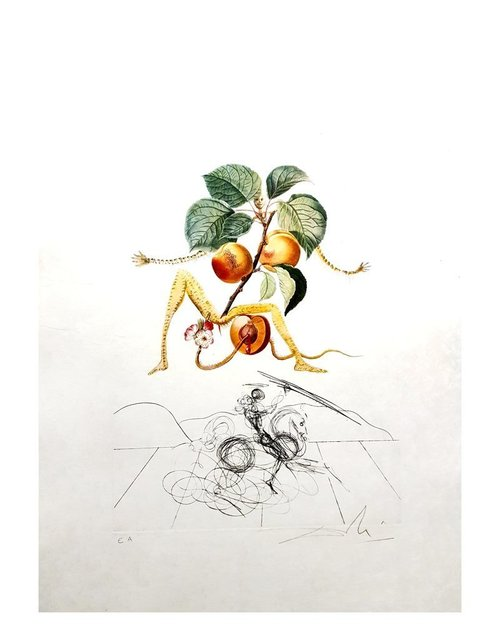 "Salvador Dalí, 'Original Lithograph ""Flordali - Apricot"" by Salvador Dali', 1969, Galerie Philia"
