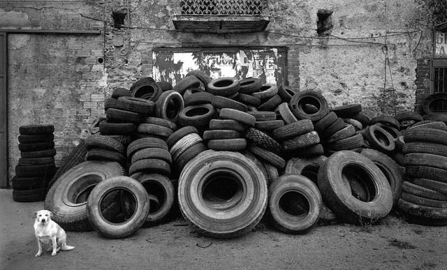 Pentti Sammallahti, 'Cilento, Italy', 2000, photo-eye Gallery