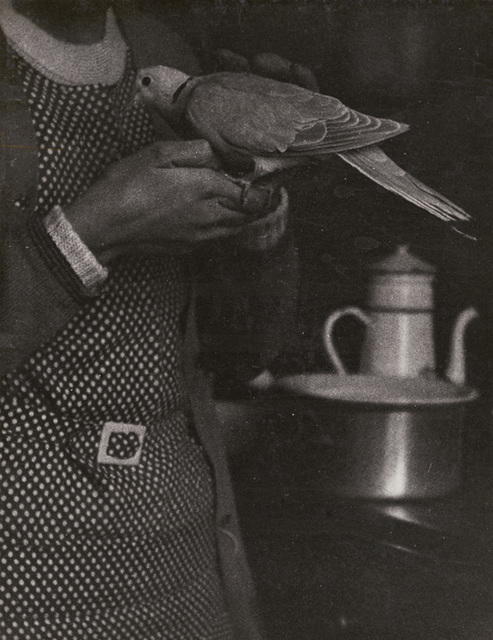 Roger Parry, 'Woman, Dove and Stove', 1929, 39 / 1929, 30, Photography, Silver print on original mount, Contemporary Works/Vintage Works