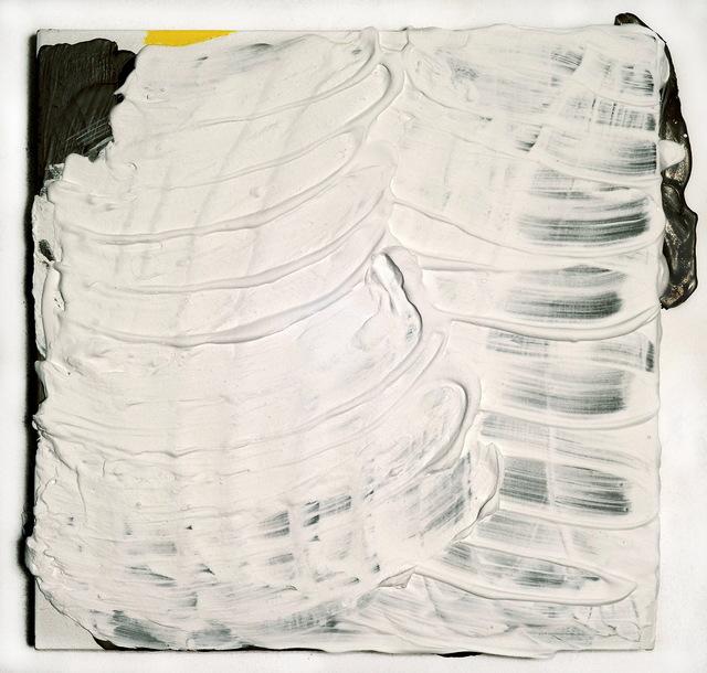 , 'Amarillo limón, (parece cálido pero es frío),' 2016, Nora Fisch