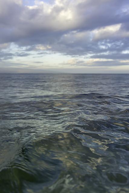 , 'First Light, Maui,' 2017, Winston Wächter Fine Art