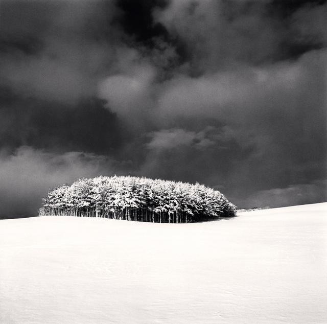, 'White Copse, Study 3, Wakkanai, Hokkaido, Japan,' 2004, photo-eye Gallery