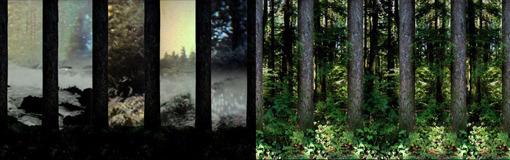 , 'In a dark wood...,' 2011, Pari Nadimi Gallery