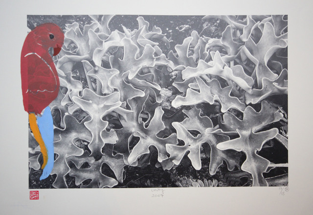 , 'CONFERENCE OF THE BIRDS,' 2007, Hafez Gallery