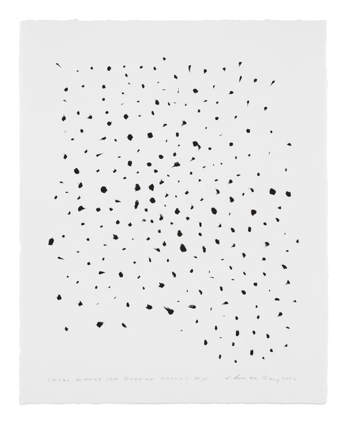 , 'Where the Breeze Passes by,' 2002, STPI