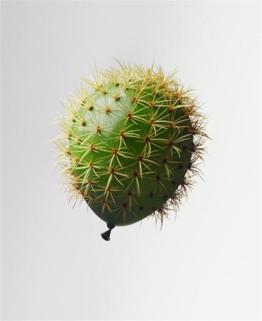 Nancy Fouts, 'Cactus Balloon', 2010, Hang-Up Gallery