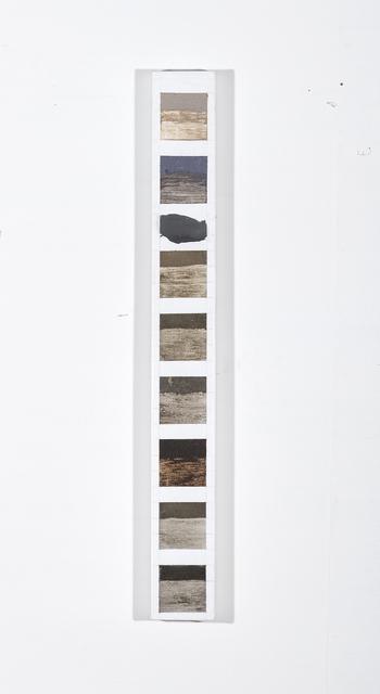 , 'Dust Study 2 ,' 2019, Nature Morte