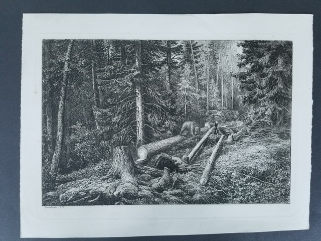 Ivan Shishkin, 'Bea in the forest', 1873, Other, Etching, Level1 Gallery