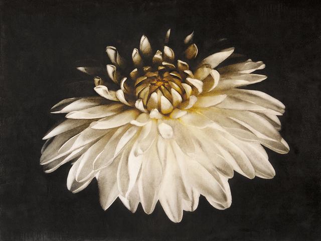 , 'White Dahlia,' 2017, Bill Lowe Gallery