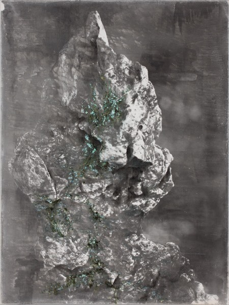 , 'Green Bloom of Decay No.24,' 2013, PHOTOFAIRS | Insights