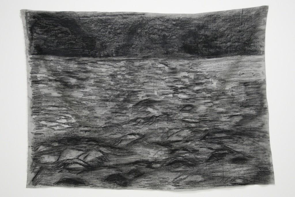 Ana María Millán — Untitled (2014)