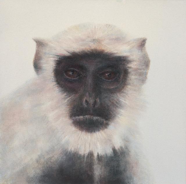 , 'monkey 猴子,' 2016, Artrue Gallery