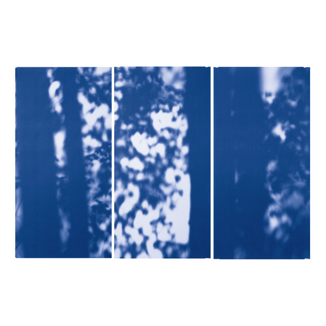 , 'Blue Line of Woods,' 2010, Highlight Gallery