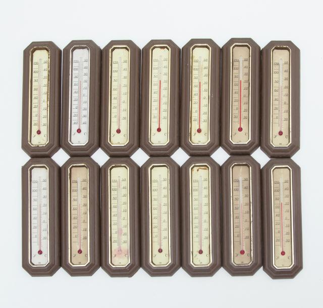 , 'Termômetro,' 2002, Galeria Nara Roesler