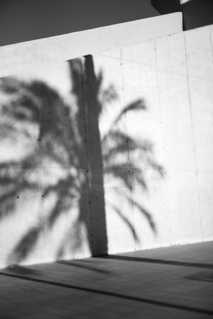, 'Gaze (Shadow),' 2016, Galerie Laurence Bernard