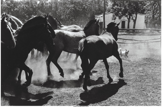 Elliott Erwitt, 'Untitled, Argentina from Son of a Bitch', 1972, Heritage Auctions