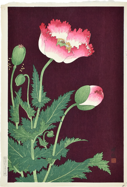 , 'Poppies,' ca. 1927, Scholten Japanese Art