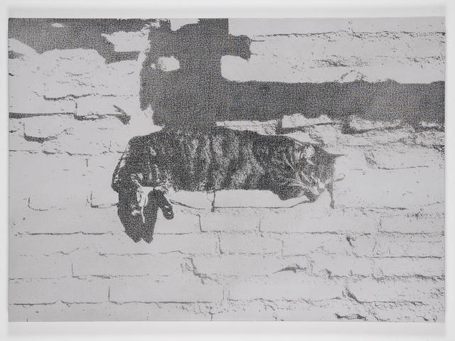 , 'Static Image Painting/(23)/Cat/Largo Argentina,' 2008, Wilding Cran Gallery