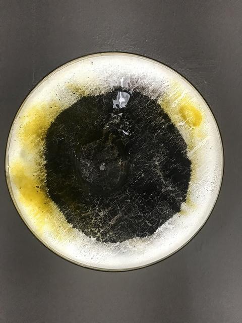 Jan Koen Lomans, 'Celestial Spheres - No. II', 2018, Rademakers Gallery